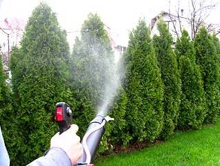 Защита растений в саду.